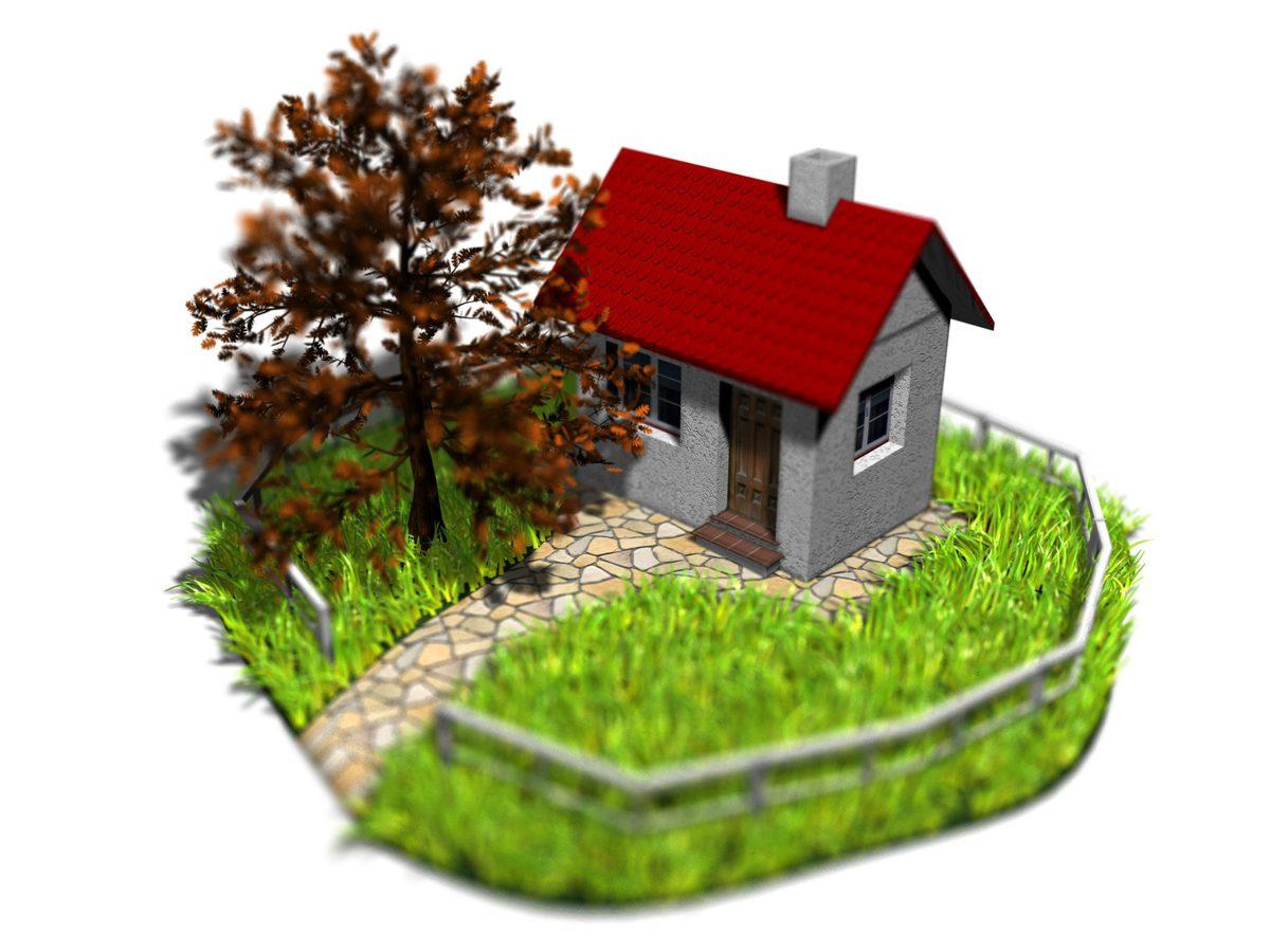 meilleur investissement maison ou appartement